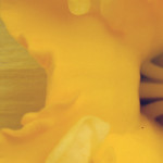 The yellow Daffodil: a noting from the insomniac-tic tourist